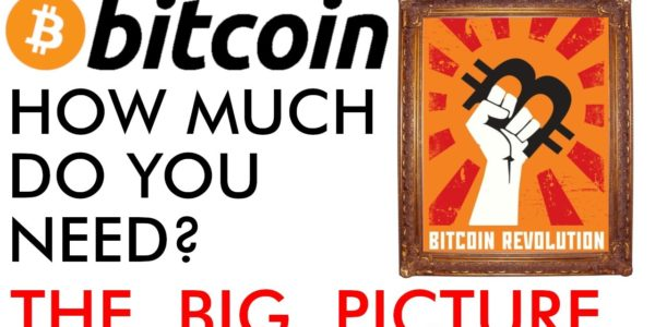 How Much Bitcoin Do You Need? The Big Price Picture [2020] − 稼げる投資系口コミ情報サイト【Trade Center】